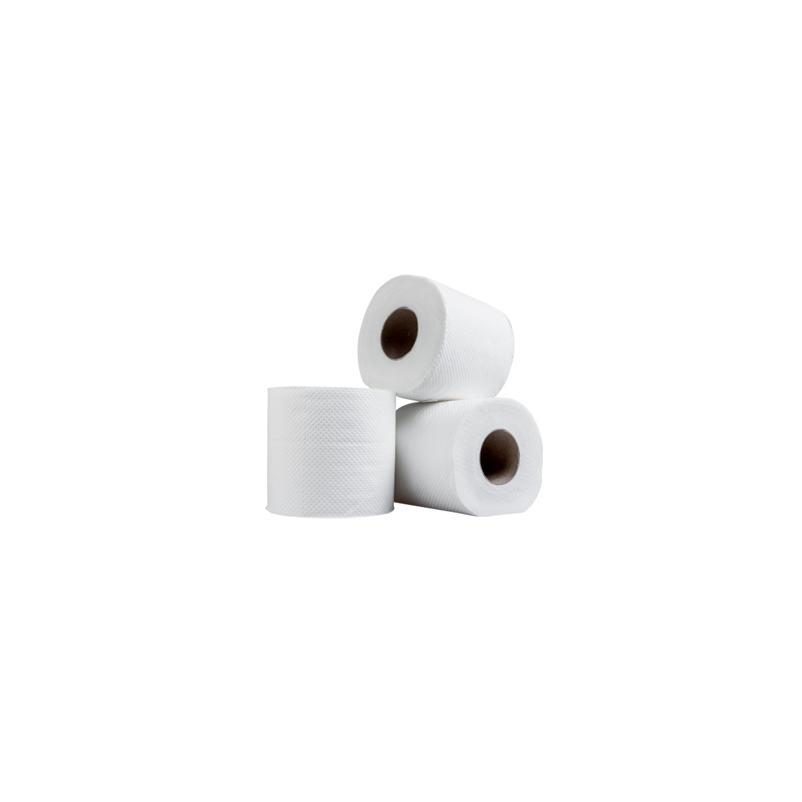 Toilet Bowl Tissue 123